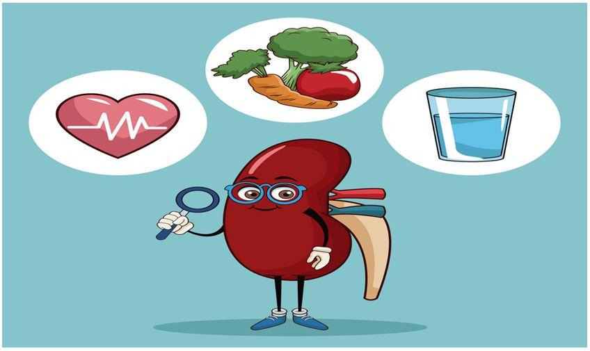 healthy kidney tips