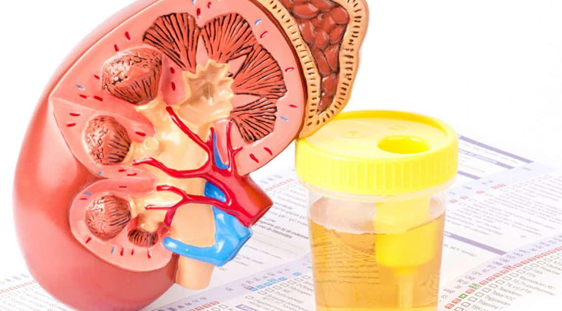 5 important kidney health numbers